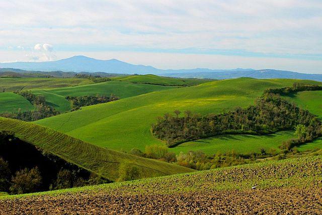Il Monte Amiata sullo sfondo delle campagne senesi