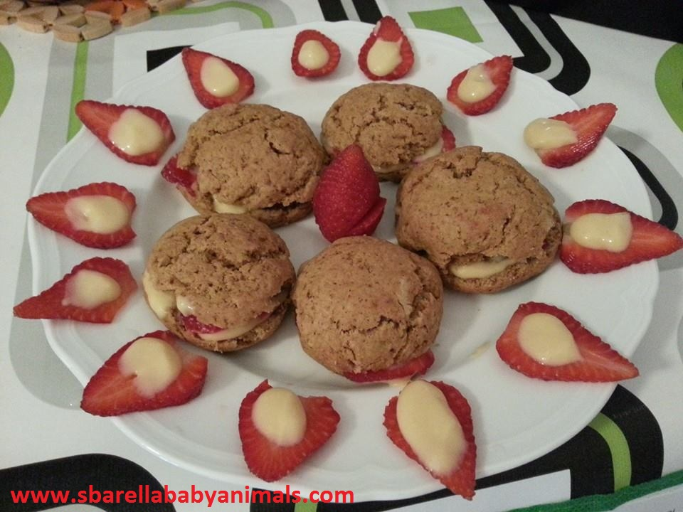 biscotti alla vaniglia1