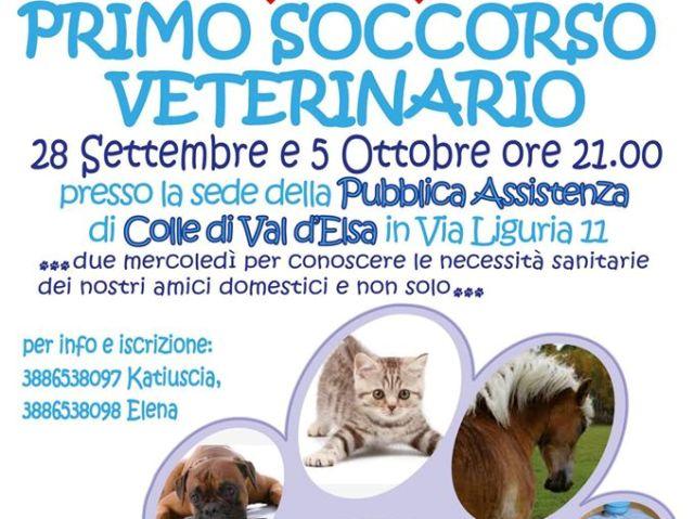 Siti di incontri veterinari